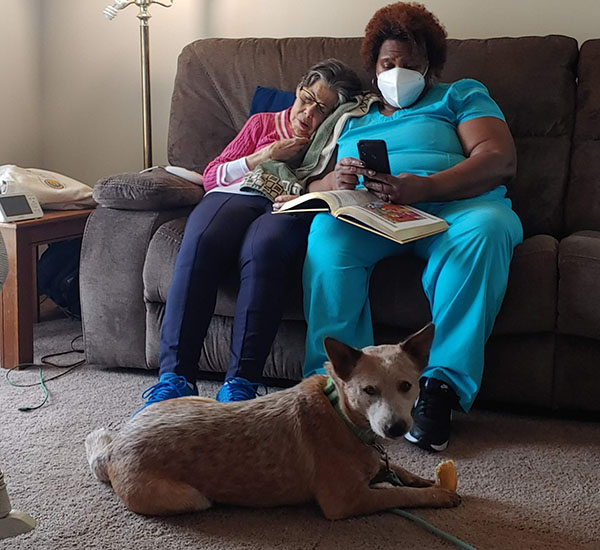 Red cattle dog chews hoof at feet of elderly woman and respite caregiver